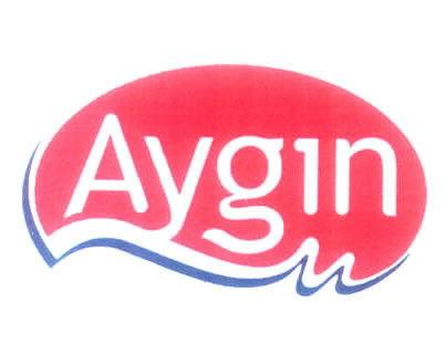 AYGIN
